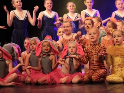 CCDA Summer Show 2015 Photo 26