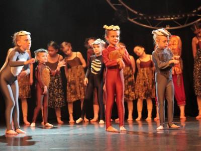 CCDA Summer Show Photo 13